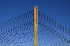 Kabel-bliven bro, Martinus Nijhoffbrug fotografering för bildbyråer