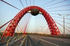 Kabel-bliven bro Närbild royaltyfria foton