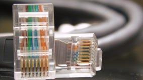 Kabel CAT-5 arkivfoto