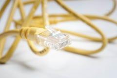 Kabel för internet Rj45 Arkivfoto
