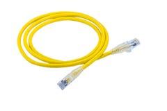 Kabel för UTP kabellapp arkivbild