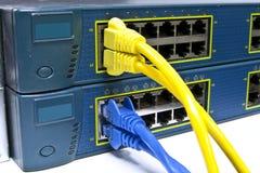 kabel förbinder LAN royaltyfria bilder