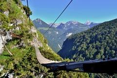 Kabel houten brug via ferratasleep in bergen boven een bos Stock Afbeeldingen