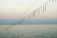 Kabel iść w morze Zdjęcia Royalty Free