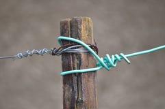 Kabel med fnuren arkivbild