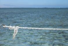 Kabel met knoop over overzees Stock Fotografie