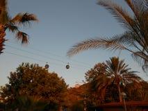 Kabelbaan met palm Stock Fotografie