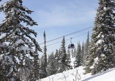 Kabelbahn im Wald, Winter Stockfotografie