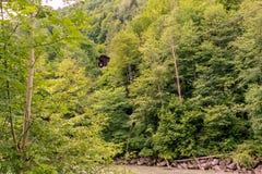 kabelbil över floden arkivfoton