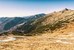 Kabelbil till det Chopok maximumet, elevatorstation i låga Tatras, guling Royaltyfria Foton