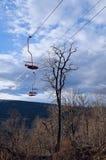 Kabelbil till och med skogen på en kantöverkant Elevatorn till tävla Royaltyfri Fotografi
