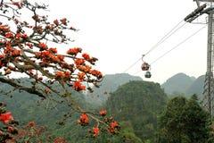 Kabelbilar nära Sapa Royaltyfria Foton