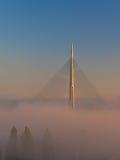 Kabelbrücke beleuchtete durch Sonnenschein über Nebel bei Sonnenaufgang nahe Ada in Belgrad Stockbild