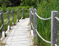 Kabelbrug in het bos Stock Foto's