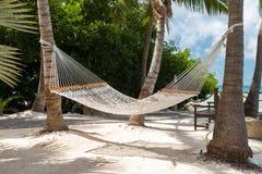 Kabelhangmatten op tropisch eiland worden opgeschort die op reiziger wachten die om binnen te ontspannen Stock Foto's