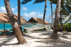 Kabelhangmatten op tropisch eiland worden opgeschort die op reiziger wachten die om binnen te ontspannen Stock Afbeeldingen