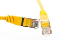 Kabeln Sie für Netz Lizenzfreie Stockfotografie
