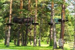Kabelpark in de bomen stock afbeelding