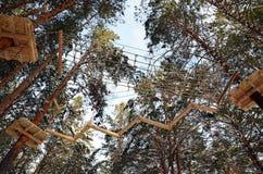 Kabelpark in het Pijnboombos Royalty-vrije Stock Afbeelding