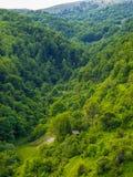 Kabin i berg, gröna skogar fotografering för bildbyråer