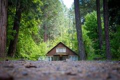 Kabin i den gröna vildmarken royaltyfria bilder