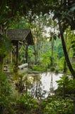 Kabin i skogen Arkivfoton