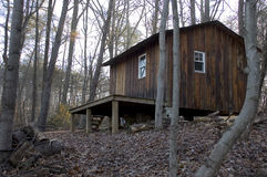 Kabin i skogen royaltyfri fotografi