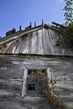 Kabin i vingården Arkivfoto