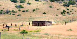 Kabin i Wyoming Royaltyfri Fotografi