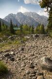 Kabin på poppelliten vik, med Teton berg, Jackson Hole, W Arkivbilder