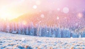 Kabina w górach w zimie, tło z niektóre miękką wysokością Fotografia Royalty Free