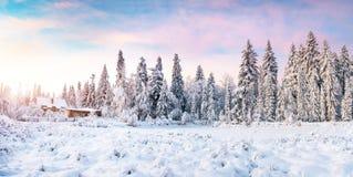 Kabine in den Bergen im Winter Geheimnisvoller Nebel In Erwartung der Feiertage karpaten Ukraine, Europa Stockfoto