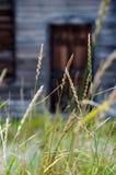 Kabine durch Gras Stockfotografie
