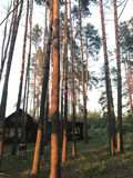 Kabinen im Wald Stockbild