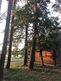 Kabinen im Wald Lizenzfreie Stockbilder