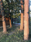 Kabinen im Wald Lizenzfreie Stockfotografie