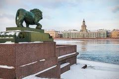 Kabinett Kuriositäten in St Petersburg an der Dämmerung im Winter Lizenzfreie Stockfotografie