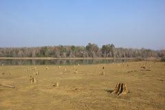 Kabini jeziora nagarhole Zdjęcie Royalty Free