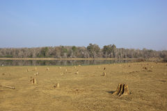Kabini lake nagarhole Royalty Free Stock Photo