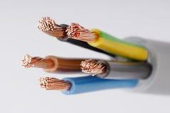 kablar Arkivbild