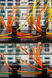 Kablar för fiberoptik som in pluggas till anhängaren Royaltyfri Bild