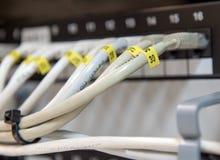 Kablar för LAN för datorEthernetdata i rad Arkivbild