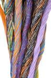 Kablar för nätverksdator, abstrakt överföring i telekommunikationsystem Royaltyfri Foto