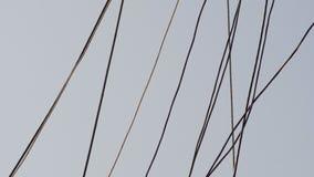 Kablar och rep arkivfilmer