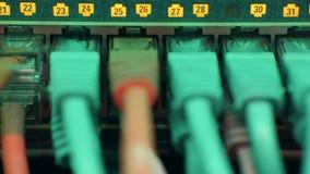 Kable łączący router przy centrum danych zbiory wideo