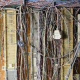 kable wilgotnych Zdjęcie Stock