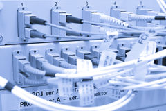 kabli związani włókna serwery Obrazy Stock