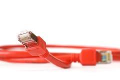 kablowa sieci komputerowej czerwień Obraz Royalty Free