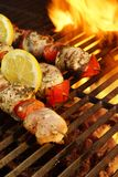 Kabob on  BBQ grill Royalty Free Stock Photography