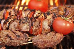 Kabobs on  BBQ grill Royalty Free Stock Photography